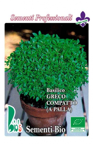 GRECO A PALLA WEIGHT: