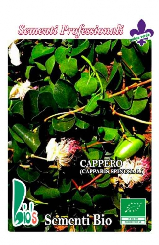 CAPPERO (capparis spinosa l.) WEIGHT: