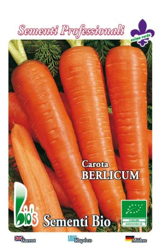 BERLICUM WEIGHT: