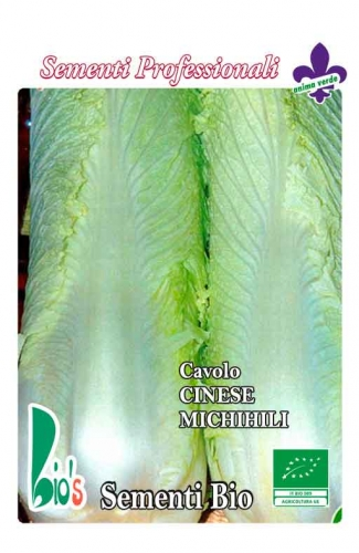 CINESE MICHIHILI WEIGHT: