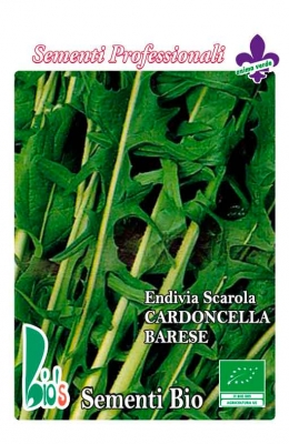 CARDONCELLA BARESE WEIGHT: