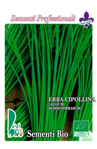 ERBA CIPOLLINA (allium schoenopresem) WEIGHT: