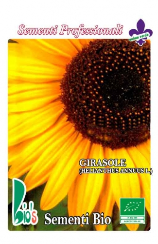 GIRASOLE (helianthus annuus l.) WEIGHT: