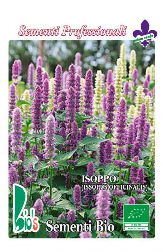 ISOPPO (issopus officinalis) WEIGHT: