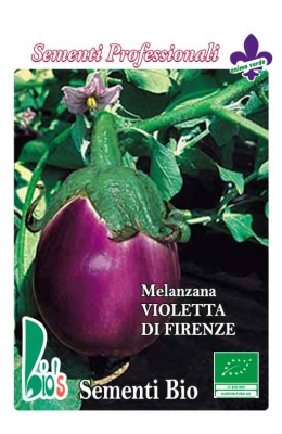 VIOLETTA DI FIRENZE WEIGHT: