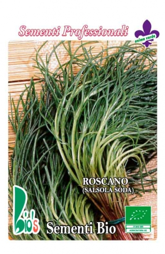 ROSCANO O AGRETTO (salsola soda) WEIGHT: